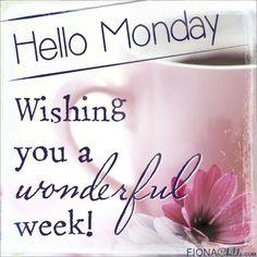 Hello Monday