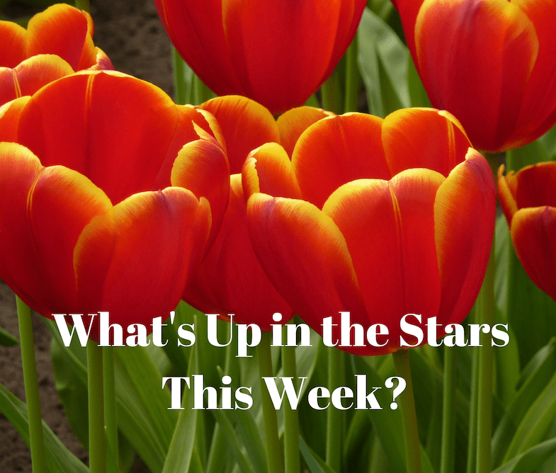 What's Up in the Stars This Week?